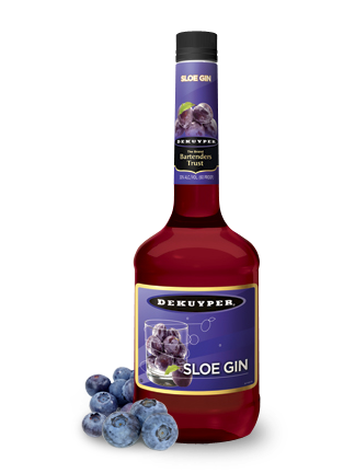 DeKuyper®Sloe Gin