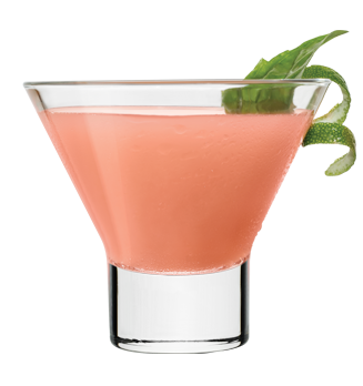 DeKuyper® Watermelon Martini